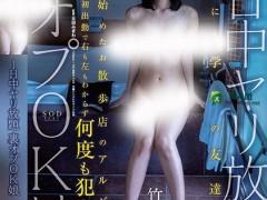 竹田梦(竹田ゆめ)个人最好看番号【STAR-990】资料详情